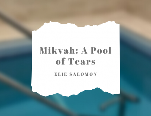 Mikvah: A Pool of Tears – By: Elie Salomon